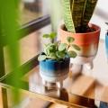 Κασπό Mojave Glaze blue mini