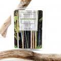 Οικολογικό Κερί Σόγιας Bamboo forest